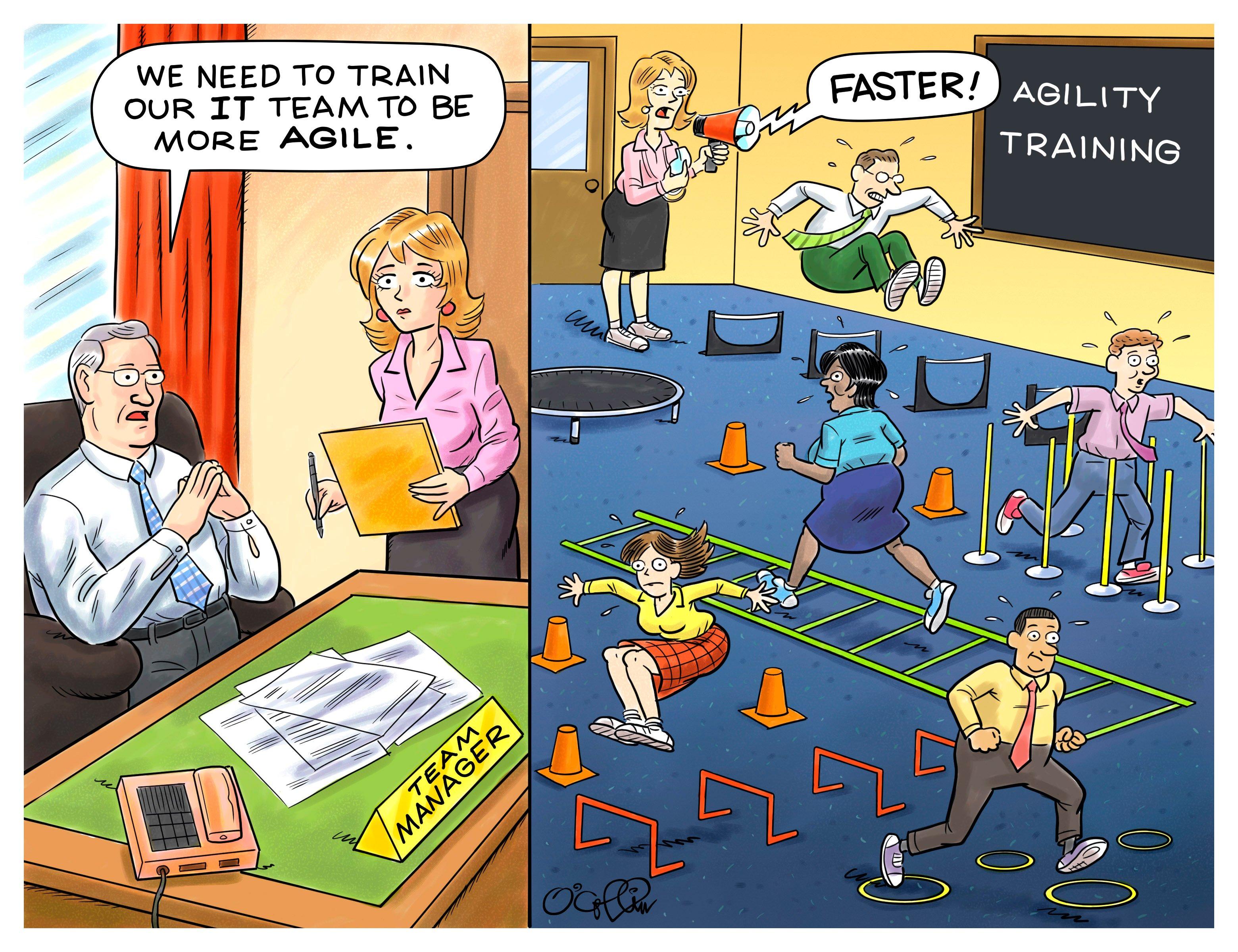 hero-blog-agility-training-cartoon-1920x350