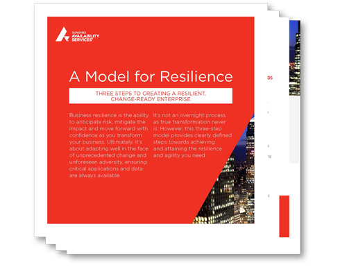 thumbnail-white-paper-a-model-for-resilience